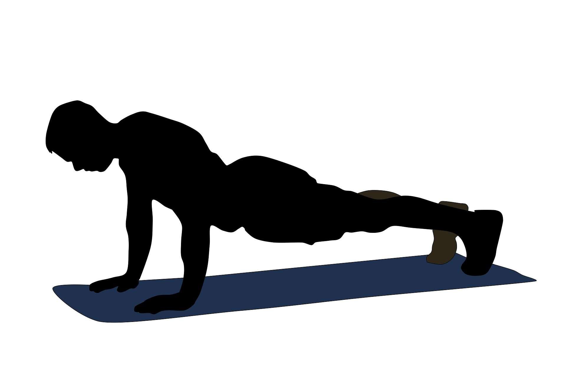 melhores exercícios para costas 1
