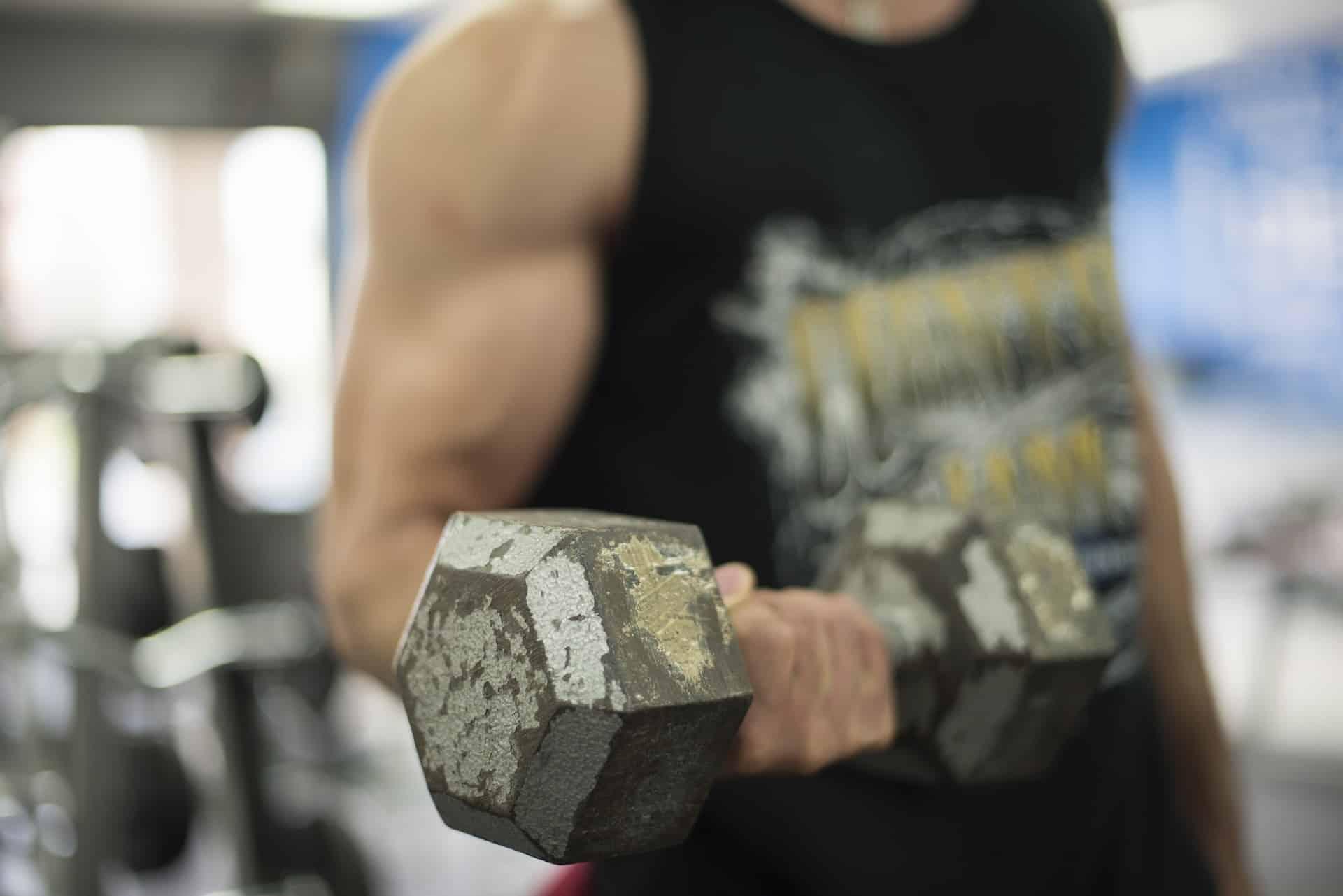 melhores exercícios para tríceps 4
