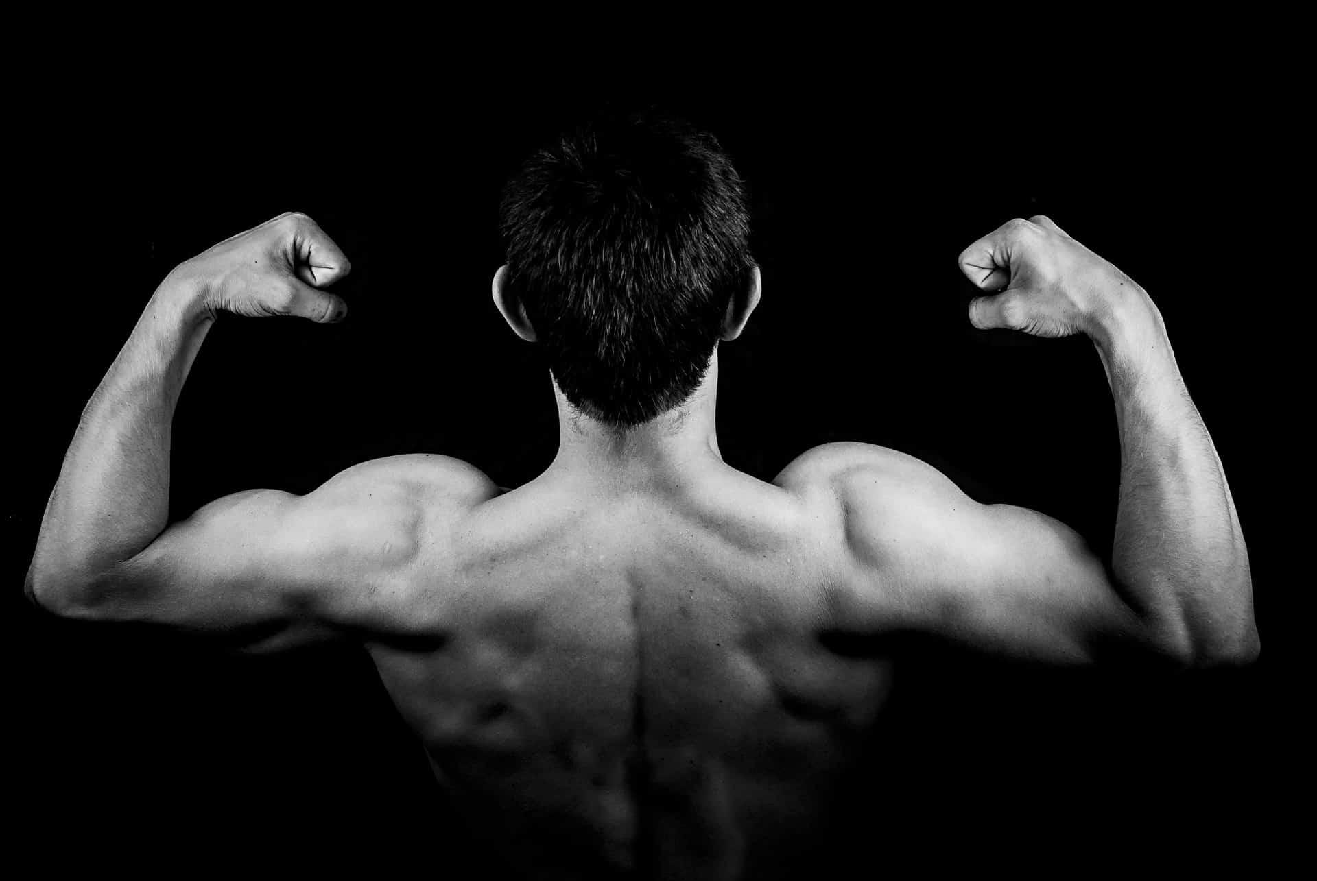 melhores exercícios para tríceps 1
