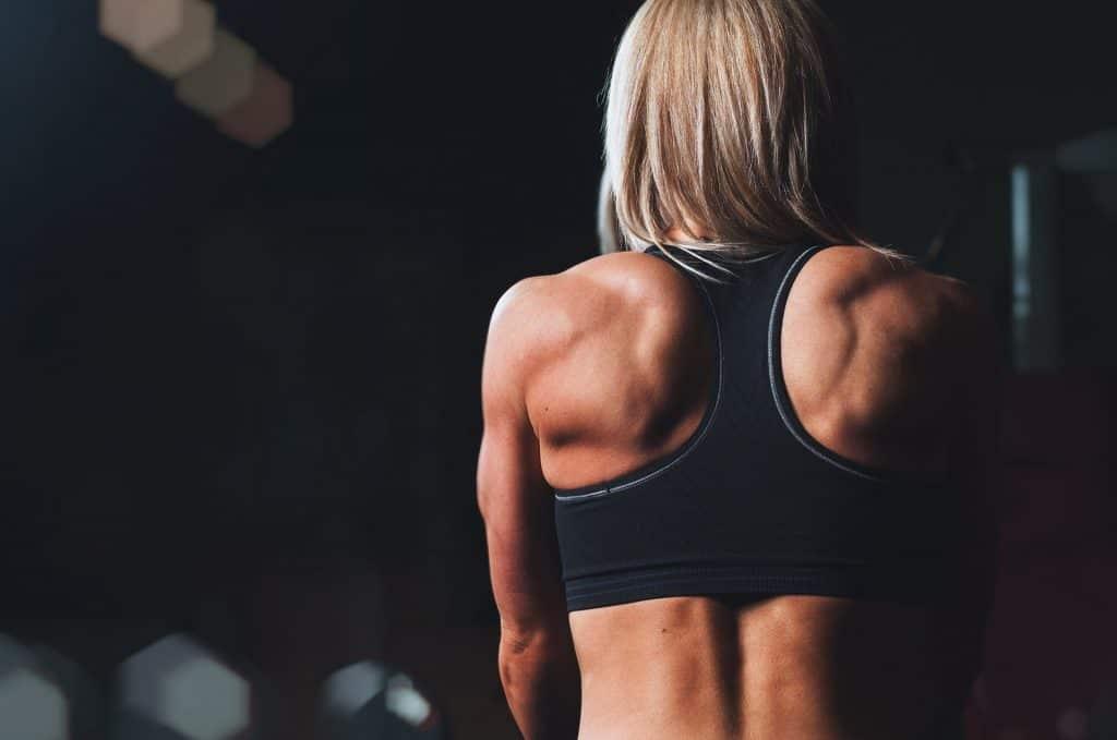melhores exercícios para costas